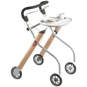 Trust Care Indoor Rollator Lets Go